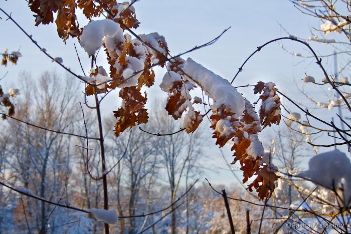 Адыгейская зима