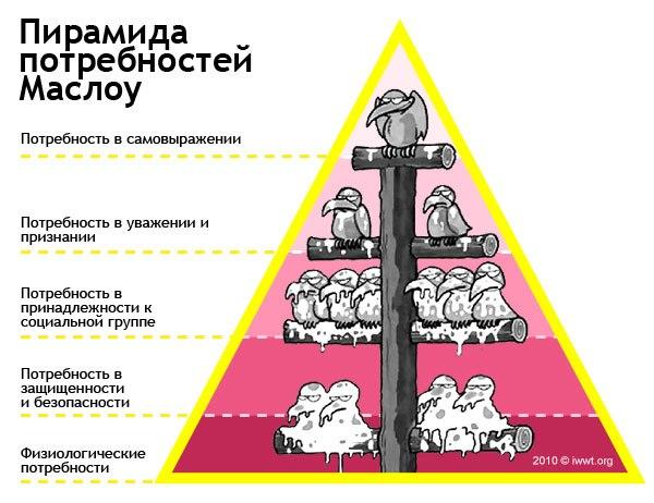пирамида птички