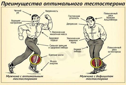 Как лечить низкий уровень тестостерона у мужчин