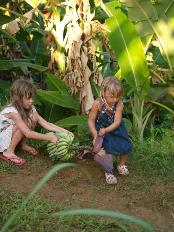 бананы-девочки