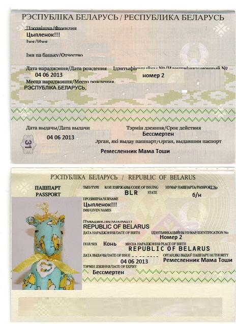 passport_Цыпленок