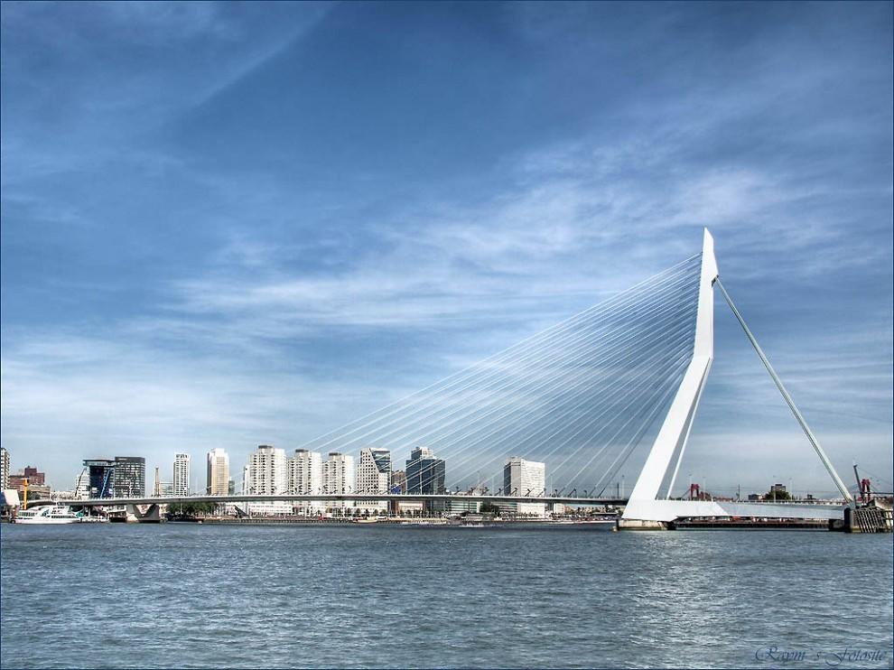 3517-990x742   Роттердам  одно -опорный  висячий  мост