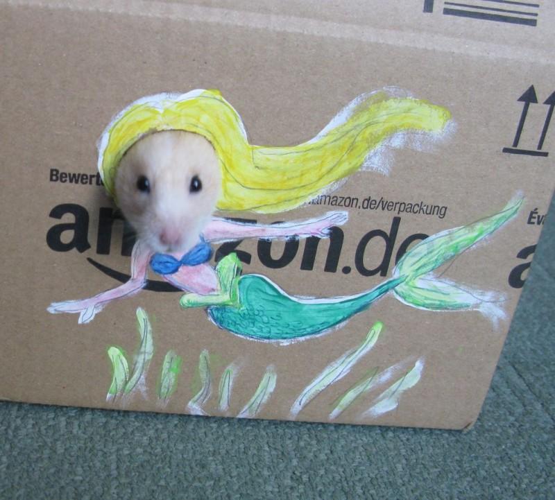 Hamster05-800x721