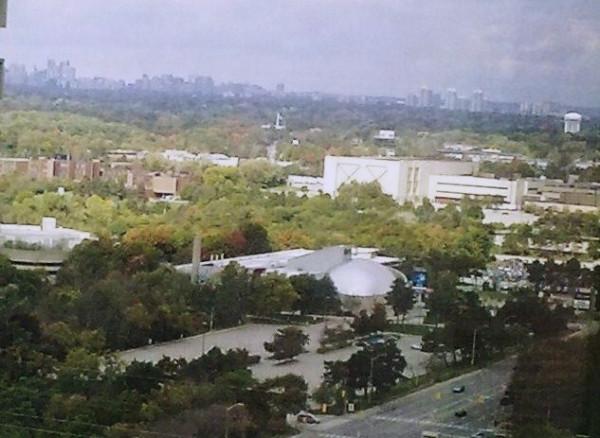 НАУЧНЫЙ  ЦЕНТР  вид  из  окна 26 этаж