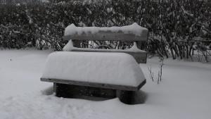 842874_10151489918081983_286126965_o    2 snow