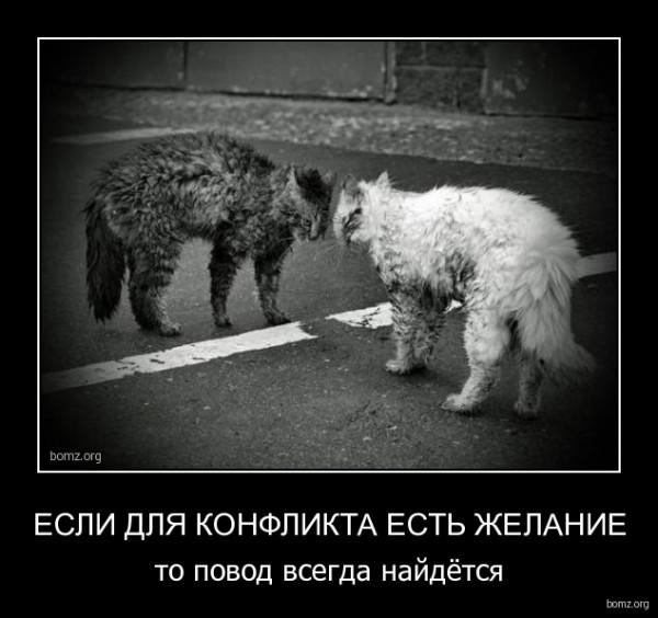 877028-2013_03_30-06_08_10-bomz_org-demotivator_esli_dlya_konflikta_est_jelanie_to_povod_vsegda_nayidietsya