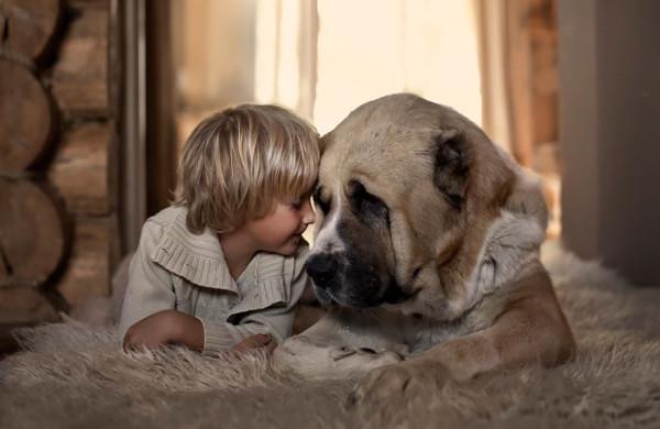 animal-children-photography-elena-shumilova-2-51