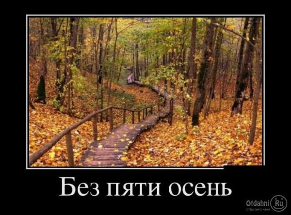 otdahni_ru_1346512390_-19demotivatory-19