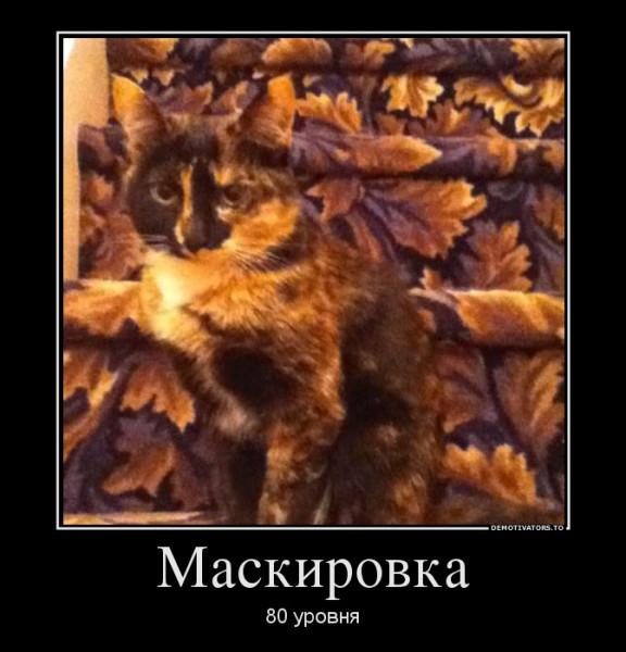 82305492_maskirovka