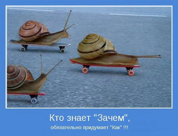 1379840176_www_radionetplus_ru-30