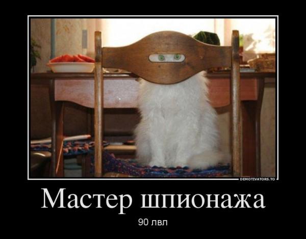 16592343_master-shpionazha