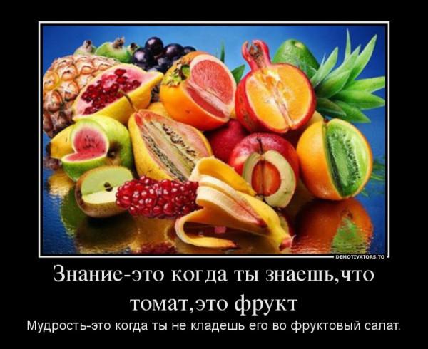 4452567_znanie-eto-kogda-tyi-znaeshchto-tomateto-frukt