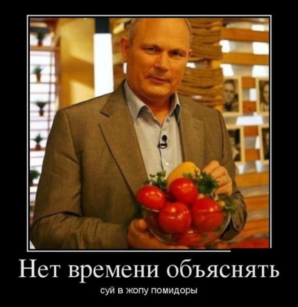 демотиватор-малахов-если-хочешь-быть-здоров-суй-ка-в-жопу-помидор-песочница-436082
