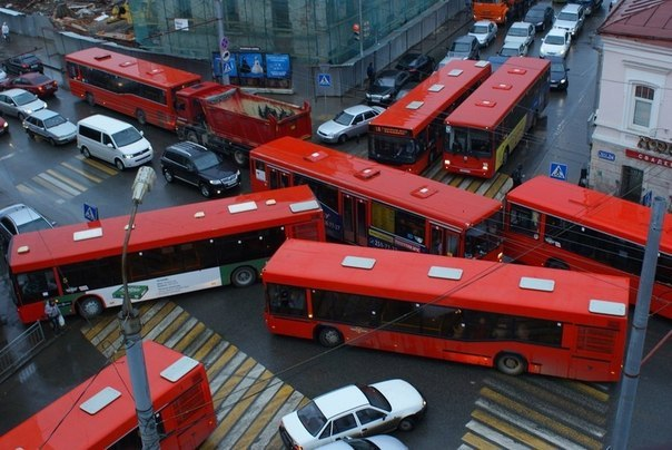 Картинки по запросу краснобусы