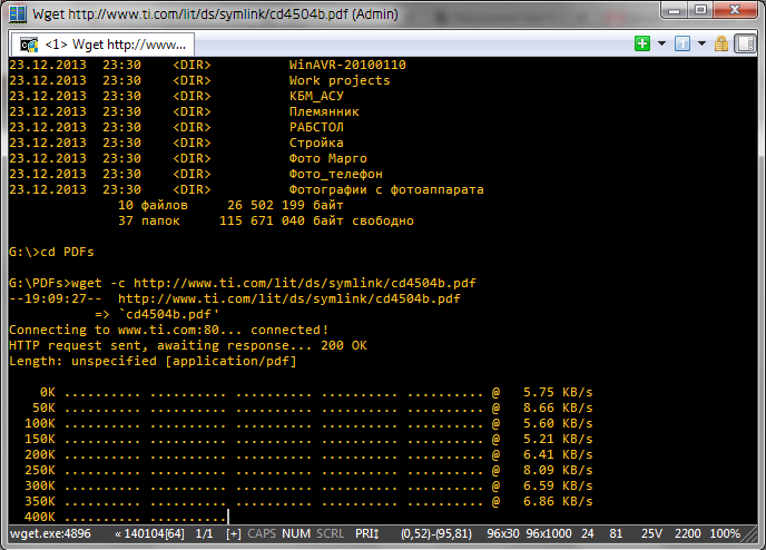 wget_console