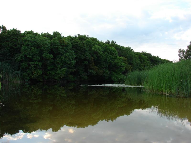 река лесной воронеж фото войска сыграли огромную