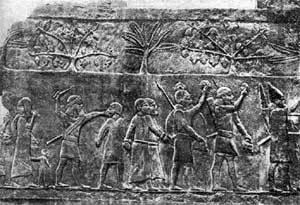 Привод пленных. Ассирийский рельеф из дворца Синахериба. VIII в. до н.э.