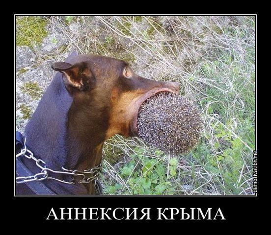 Россия активизировала воздушную разведку: вдоль границы зафиксированы полеты восьми российских Ми-8, - Госпогранслужба - Цензор.НЕТ 9960