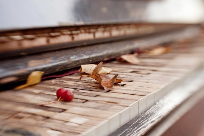 Музыка осенних листьев