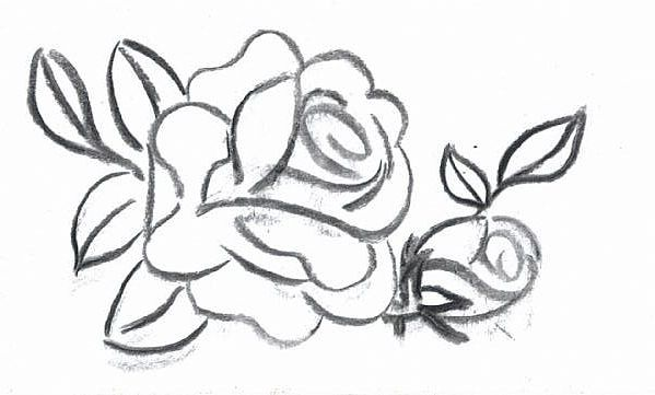 Рисунок карандашом цветы розы