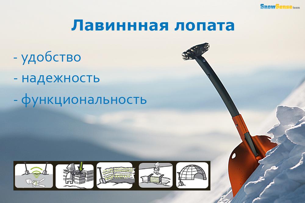 ava staff_53