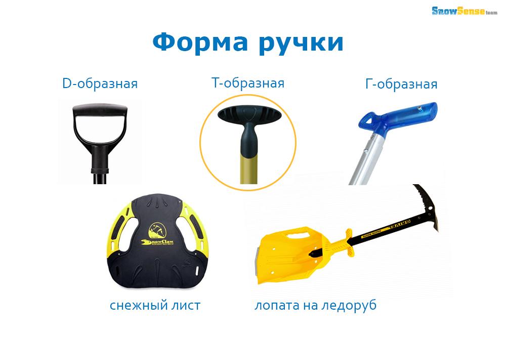 ava staff_56