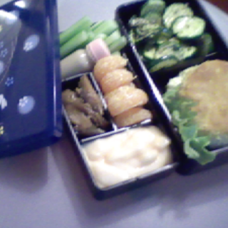 Lunch, February 7th, 2009