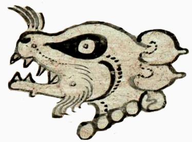 Opossum Mam-01