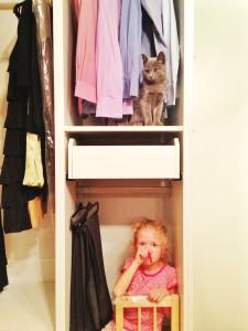 ikea шкаф кот
