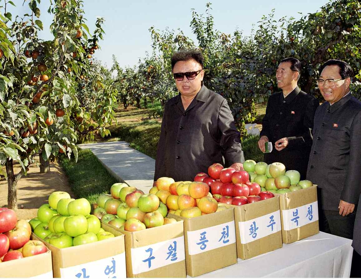 4. Великий Руководитель товарищ Ким Чен Ир руководит на месте уездом Кваиль, сентябрь 2001 года