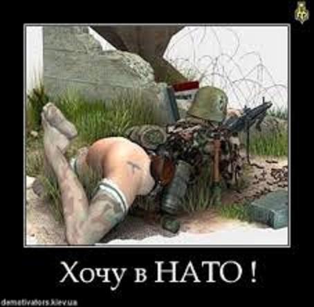 Хочу в НАТО