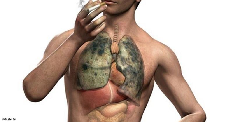 За сколько очищаются легкие после курения