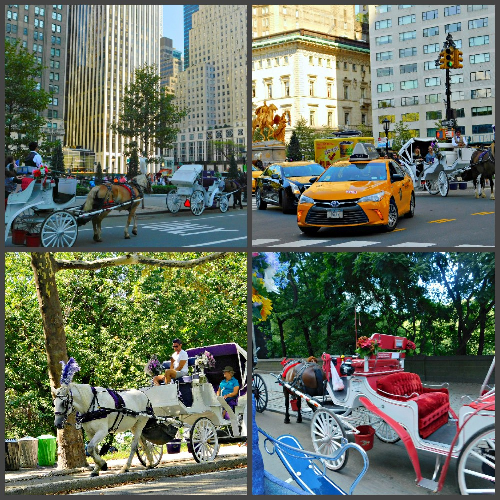 NYC Horse Carriage Ride.jpg