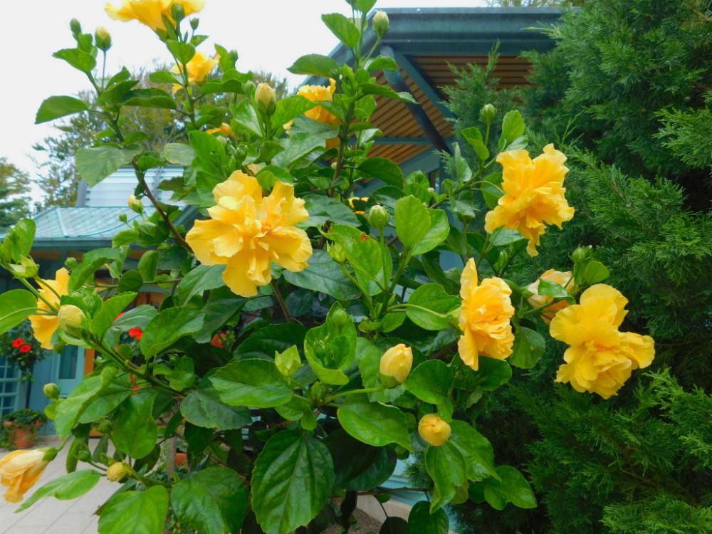 DSCN0108blog.jpg