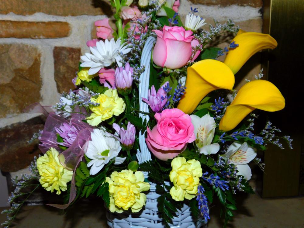 DSCN9586blog.jpg