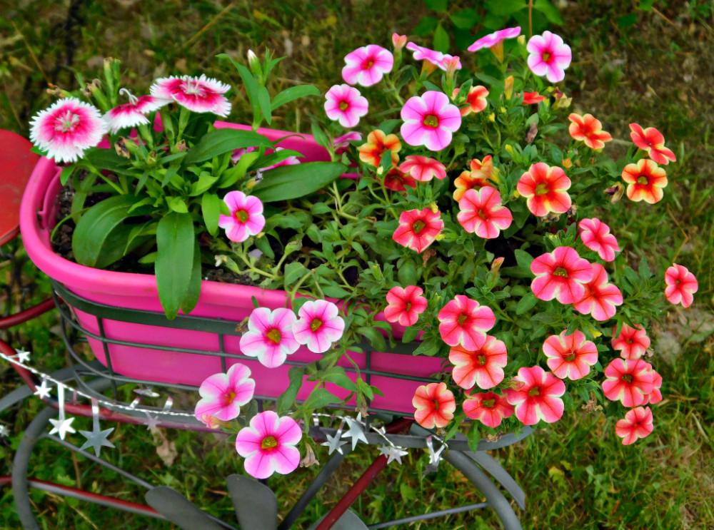DSCN0156blog.jpg