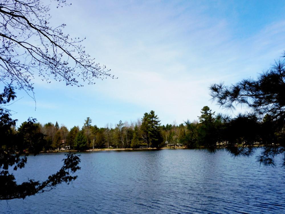 Большое озеро и его окрестности DSCN9686.jpg