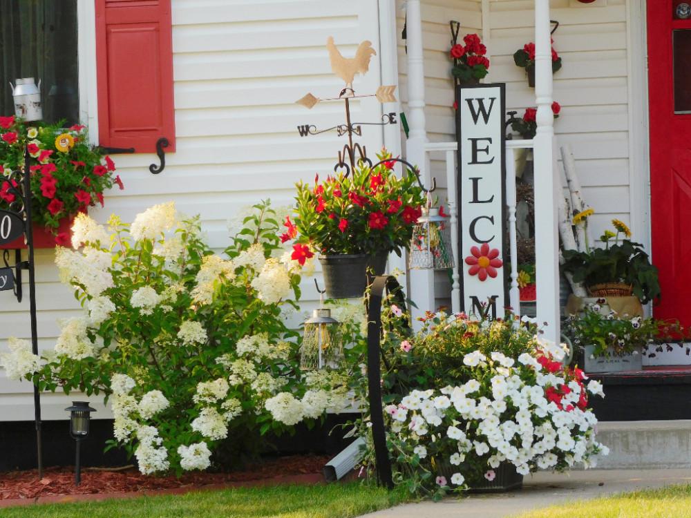Цветочный домик DSCN9892(1).jpg
