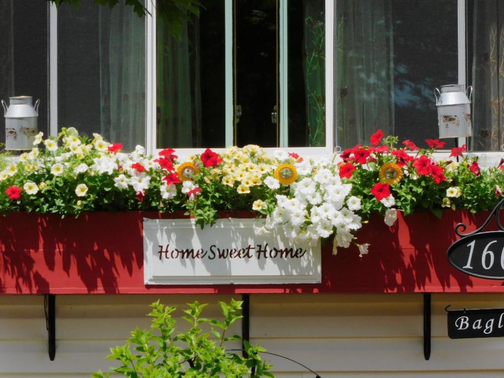Цветочный домик DSCN9893(2).jpg