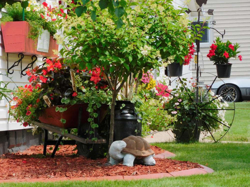 Цветочный домик DSCN9898(1).jpg