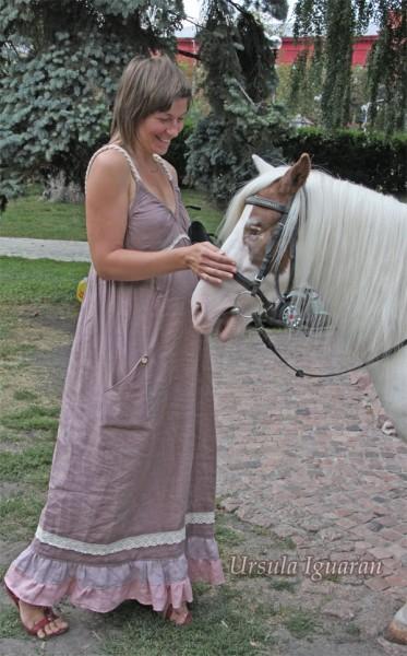 коричный конь копия