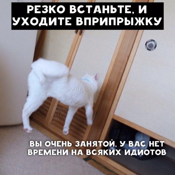 1A8u8KHymsk