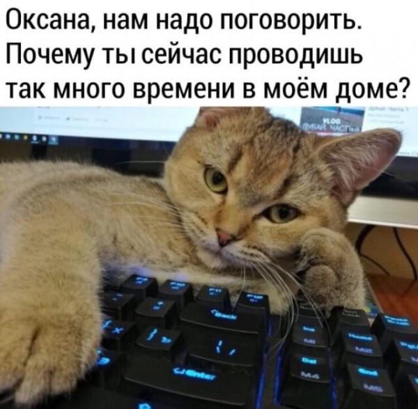 vNUMXsImtVU