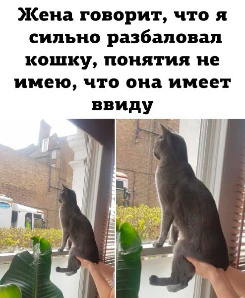 v6VkZG_CmG4