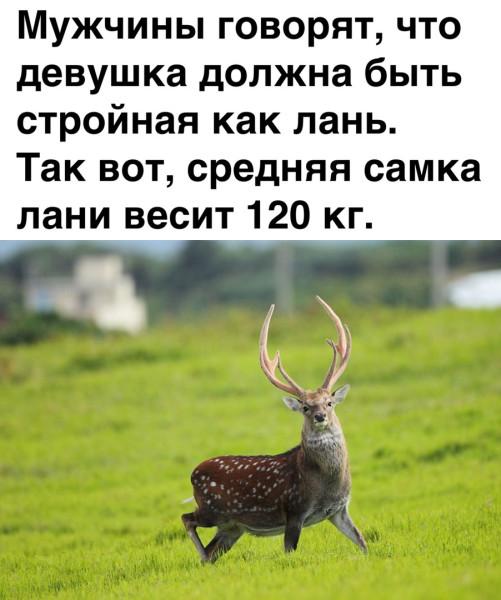 PKEOTeH1Cnk