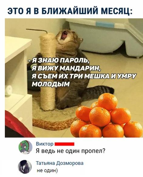 MqtbMmLgO1c