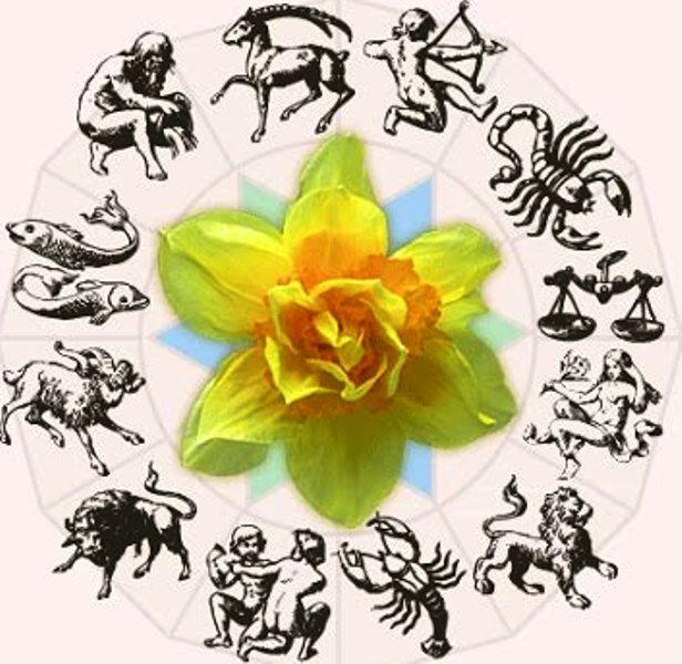Цветы Для Людейпод Знаком