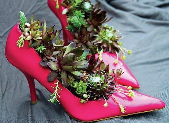 обувь и одежда 3
