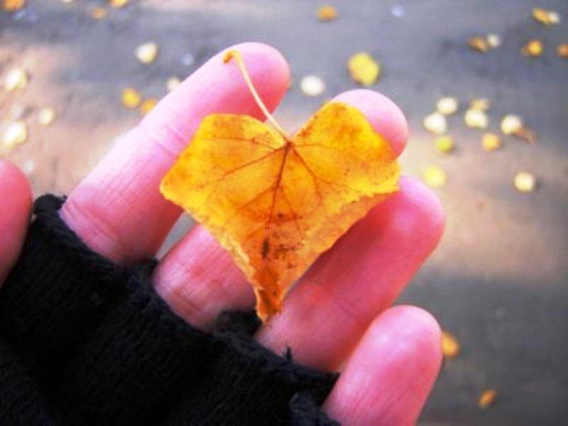 листок в руке