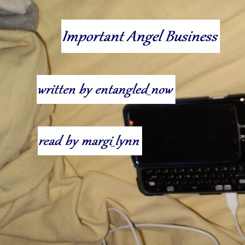 Important Angel Business cover